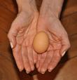 osteopathie et infertilite